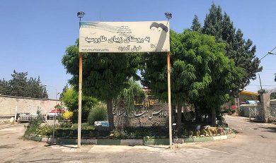شهرک طاووسیه کرج کجاست